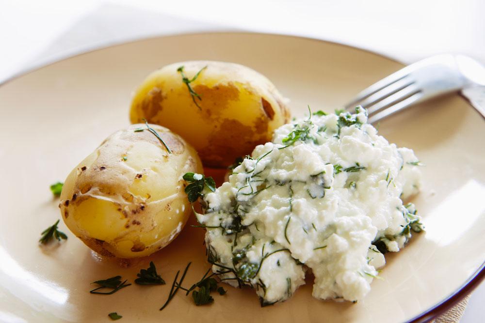 fe ricette light programma dieta mediterranea perdere peso velocemente clinica di dimagrimento centro ferrara magrella patate fiocchi di latte